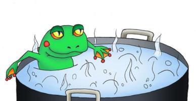 כמו הצפרדע המתבשלת